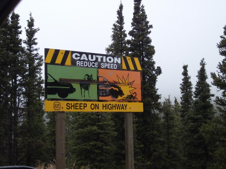 Along the Alaska Highway