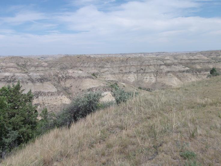 Theodore Roosevelt National Park, North Dakota, USA