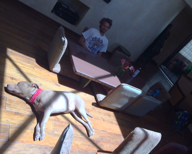 Chilling with the dog at breakfast.